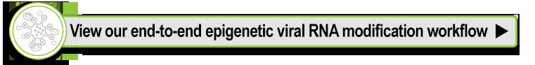 View EpiGentek's epigenetic viral RNA modification workflow
