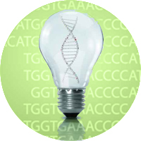Custom Epigenetic Research Submit Services Inquiry Today!