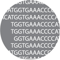 Epigenetic NGS Library Preparation Services