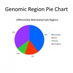 Genomic Region Pie Chart for Methyl-Seq Service